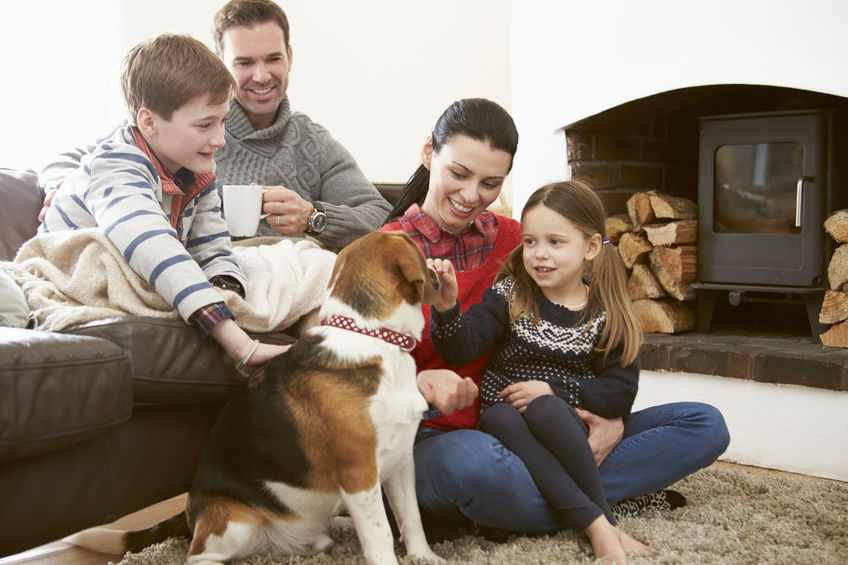 Are Beagles a good family dog